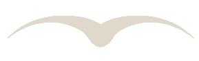 Vogel al Freiheitssymbol